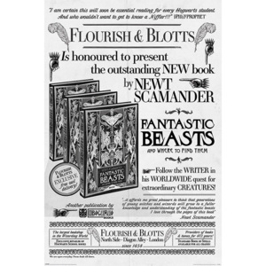 Fantastic Beasts: The Crimes Of Grindelwald - Flourish And Blotts Poster, (61 x 91,5 cm)