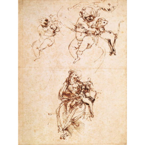 Studies for a Madonna with a Cat, c.1478-80 Reproducere, Leonardo da Vinci