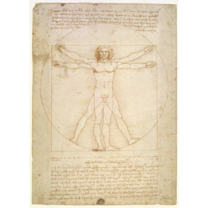 The Proportions of the human figure (after Vitruvius), c.1492 Reproducere, Leonardo da Vinci