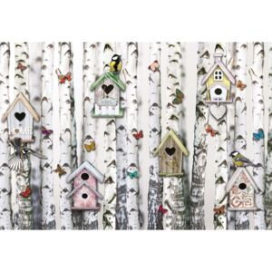 Birch Trees And Birdhouses Vintage Chic Fototapet, (368 x 254 cm)