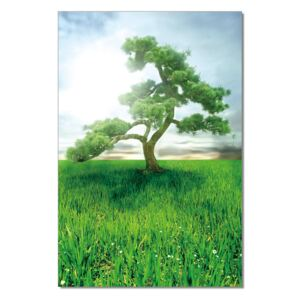 Pine Dream Tablou, (80 x 120 cm)