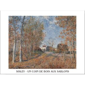 Edge of the Forest in Sablons Reproducere, Sisley, (70 x 50 cm)