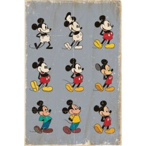 MICKEY MOUSE - evolution Poster, (61 x 91,5 cm)
