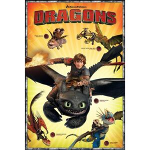 Dragons - Characters Poster, (61 x 91,5 cm)
