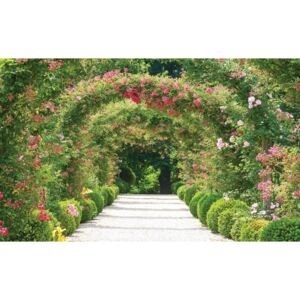 Garden Path Nature Fototapet, (152.5 x 104 cm)