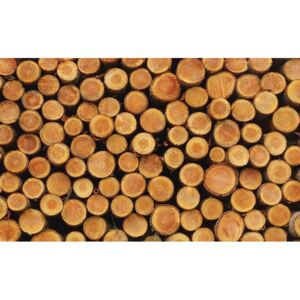 Wood Texture Logs Nature Fototapet, (152.5 x 104 cm)