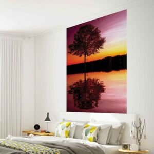 Tree Lake Reflection Sunset Nature Fototapet, (104 x 70.5 cm)