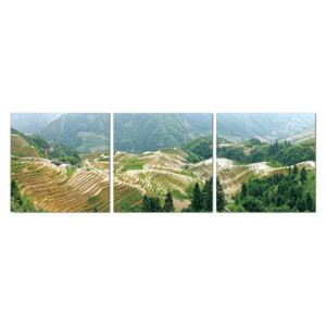 Terraced plantations Tablou, (150 x 50 cm)