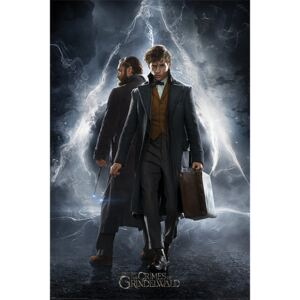 Fantastic Beasts: The Crimes Of Grindelwald - Newt & Dumbledore Poster, (61 x 91,5 cm)