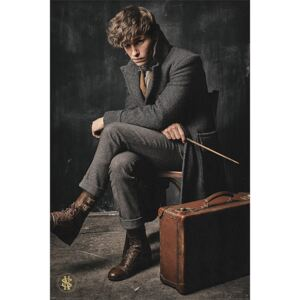 Fantastic Beasts: The Crimes Of Grindelwald - Newt Scamander Poster, (61 x 91,5 cm)