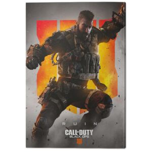 Call of Duty: Black Ops 4 - Ruin Tablou Canvas, (60 x 80 cm)