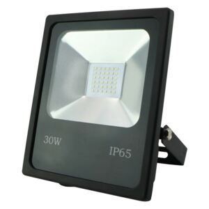 LED Proiector R1482 SANDY LED/30W/230V IP65
