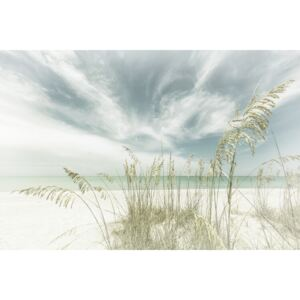 Fotografii artistice Heavenly calmness on the beach | Vintage, Melanie Viola