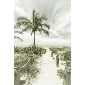 Fotografii artistice Path to the beach | Vintage, Melanie Viola