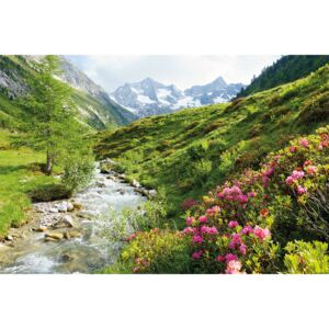 Alpy - Nature and Mountains Poster, (91,5 x 61 cm)