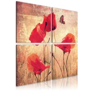 Tablou Bimago - Retro Style, Poppy And Butterfly 40x40 cm