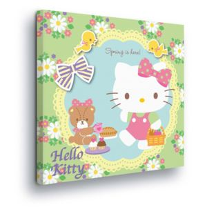 GLIX Tablou - Flower Decoration with Hello Kitty 80x80 cm