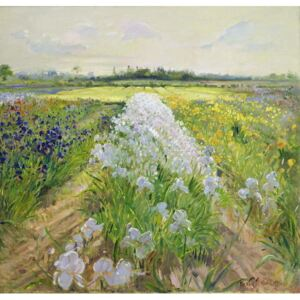 Down the Line, 1995 Reproducere, Timothy Easton