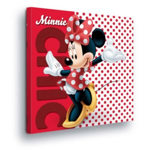 Tablou - Spotted Disney Minnie Mouse II 80x80 cm