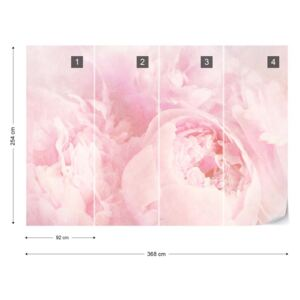 Fototapet - Beautiful Blooms Faded Vintage Pink Papírová tapeta - 368x254 cm