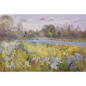 Iris Field in the Evening Light, 1993 Reproducere, Timothy Easton