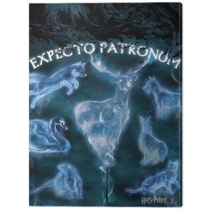 Tablou Canvas Harry Potter - Patronus, (60 x 80 cm)