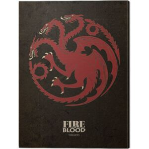 Tablou Canvas Game Of Thrones - Targaryen, (30 x 40 cm)