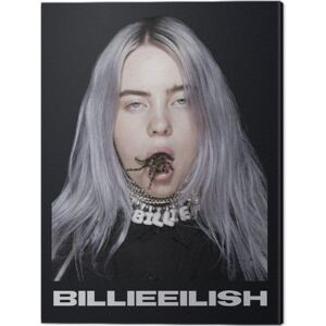 Tablou Canvas Billie Eilish - Spider, (30 x 40 cm)