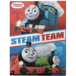 Tablou Canvas Thomas & Friends - Steam Team, (30 x 40 cm)