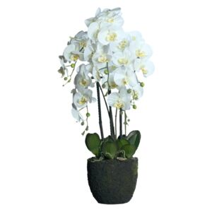 Orhidee artificială Phalaenopsis Fresh cu aspect 100% natural, 85 cm