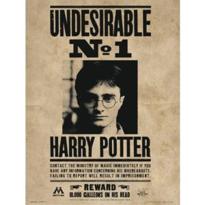 Harry Potter - Undesirable No1 Reproducere, (30 x 40 cm)