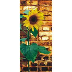 Tapet pentru usă - Sunflower on bricks Hârtie tapet