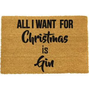 Covoraș intrare din fibre de cocos Artsy Doormats All I want, 40 x 60 cm