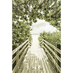 Fotografii artistice Bridge to the beach with mangroves | Vintage, Melanie Viola