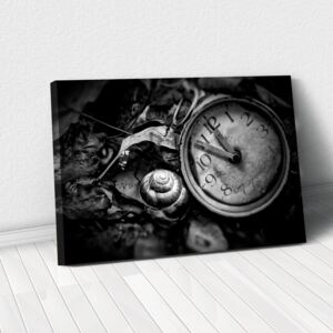 Tablou Canvas - Lost time