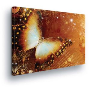 GLIX Tablou - Butterfly in Golden Tones II 100x75 cm