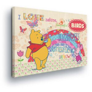 GLIX Tablou - Disney Winnie the Pooh and the Rainbow 60x40 cm