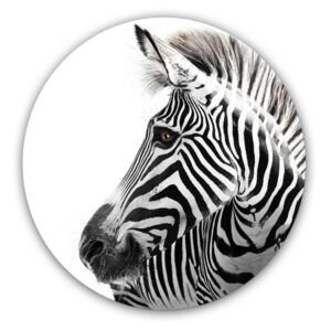 Styler Imagine din sticlă rotundă - Zebra