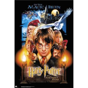 Harry Potter And The Sorcerers Stone Poster, (61 x 91,5 cm)