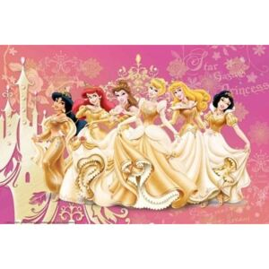 Poster - Disney Princess