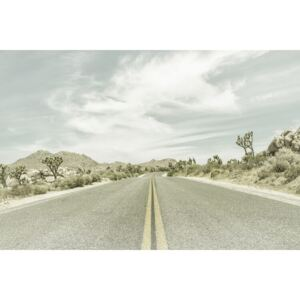 Country Road with Joshua Trees, (128 x 85 cm)