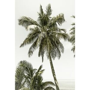 Palm Trees at the beach | Vintage, (85 x 128 cm)