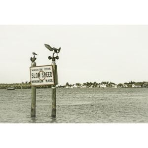 Coastal View from Fort Myers Beach | Vintage, (128 x 85 cm)