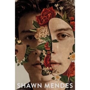 Shawn Mendes - Flowers Poster, (61 x 91,5 cm)