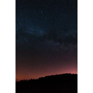 Fotografii artistice Night photos of the Milky Way with stars and trees., Javier Pardina