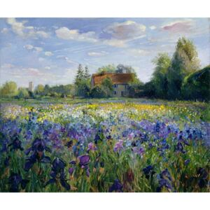 Evening at the Iris Field Reproducere, Timothy Easton