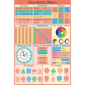 Educational Basics Poster, (61 x 91,5 cm)