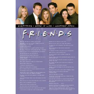 Friends - Everything I Know Poster, (61 x 91,5 cm)