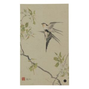 Poster multicolor din hartie 25x35 cm Swallows Be Pure Home