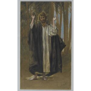 Saint Simon, illustration from 'The Life of Our Lord Jesus Christ' Reproducere, James Jacques Joseph Tissot